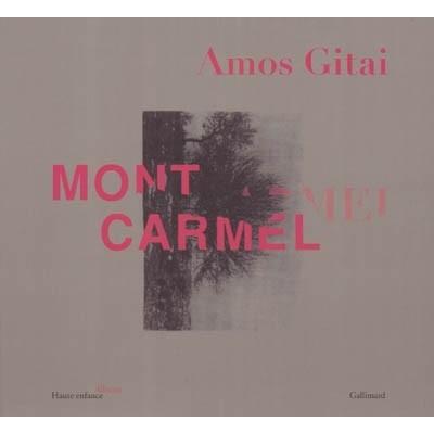 http://www.librairiedutemple.fr/1180-thickbox_default/mont-carmel.jpg