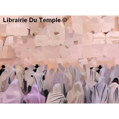 http://www.librairiedutemple.fr/6923-thickbox_default/bar-mitsva-au-kotel.jpg