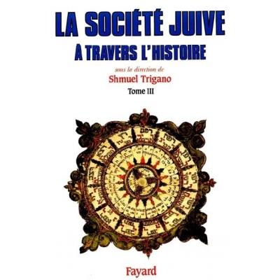 LA SOCIETE JUIVE A TRAVERS L'HISTOIRE T.3 - LE PASSAGE D'ISRAEL