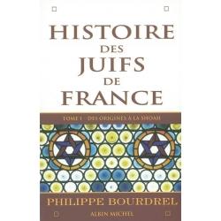 HISTOIRE DES JUIFS DE FRANCE VOL.1