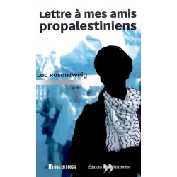LETTRE A MES AMIS PROPALESTINIENS