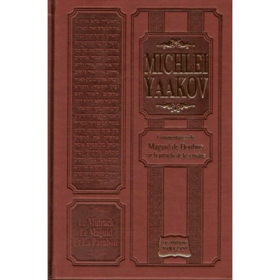 LE MIDRACH, LE MAGUID ET LA PARABOLE - MICHLEI YAAKOV