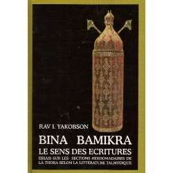 BINA BAMIKRA - LE SENS DES ECRITURES