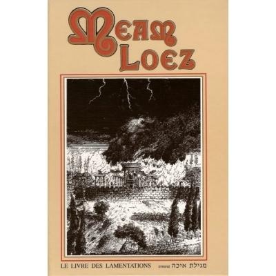 MEAM LOEZ - LE LIVRE DES LAMENTATIONS