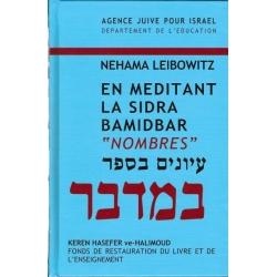 EN MEDITANT LA SIDRA : BAMIDBAR / NOMBRES