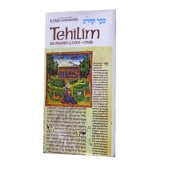 LA BIBLE COMMENTEE : TEHILIM T.4