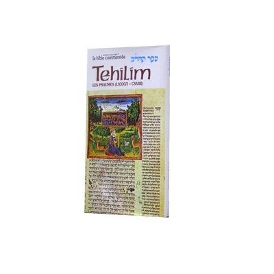 LA BIBLE COMMENTEE : TEHILIM T.4