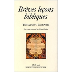 BREVES LECONS BIBLIQUES